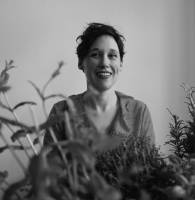 Melissa Van Drie